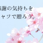0220_blog_2